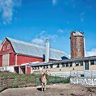 Harvest Hill Farms by Richard Bean