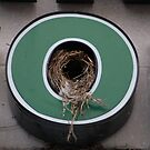 Urban Nest in O by Carmen Mandel-Cesáreo