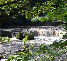 Aysgarth Upper Falls II by Keiron Allen