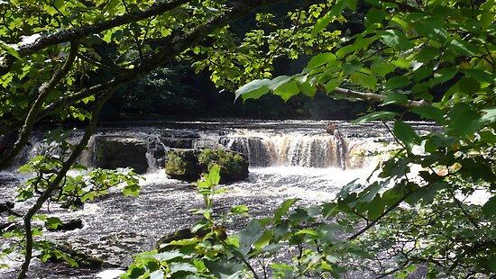 Aysgarth Upper Falls II by Keiron Allen