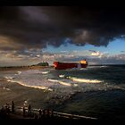 Pasha Bulker by Jeff Davies