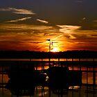 Last Rays by Jeremy Davis