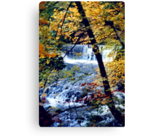 Stock Ghyll in Autumn Canvas Print