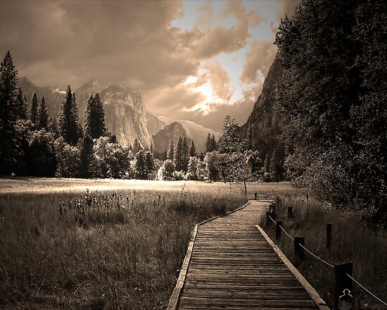 Yosemite Boardwalk by Jim Sells