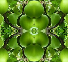 LITTLE GREEN APPLES by pjmurphy