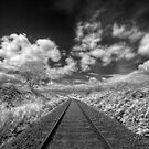 Railway Track by Kevin Hart