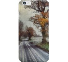 The Flight of Frost iPhone Case/Skin