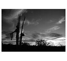 Desert 2 Photographic Print
