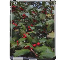 Deck The Halls iPad Case/Skin