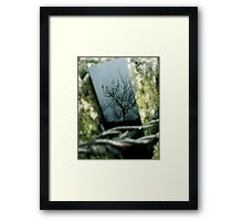 Tree-Black mirror and cold weather Framed Print