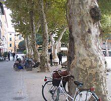 Lucca, carless city by RosemaryO