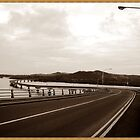 San Juanico Bridge, Philippines by Jelynn