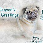 "Pug ""Season's Greetings ~ Greeting Card by Susan Werby"