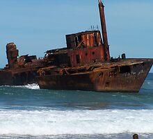 Shipwrecked on Stockton Beach by Joanna Roser