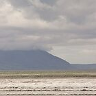 Surfer on Inch Beach, Ireland by ThomasMaher