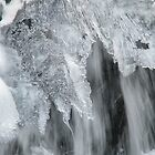 Kamyanka waterfall in winter by Elena Skvortsova