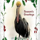 "Pelican ""Season's Greetings"" ~ Greeting Card by Susan Werby"