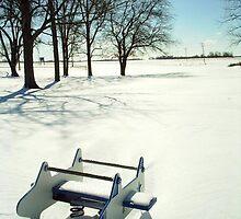 snowy plane by Mina
