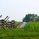 Antietam Battlefield by Heather Meadows