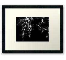 Blossom - White Framed Print