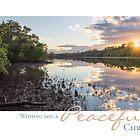Sunrise - Tallebudgera Creek, Gold Coast, Australia by Lisa Frost