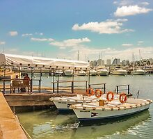 Sunny Morning at the Port of Punta del Este by DFLC Prints