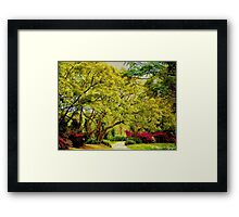 Come Stroll With Me Framed Print