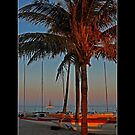 Ft. Lauderdale Sunset - Cool Stuff by Maria A. Barnowl