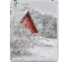 Red Shed In The Snow iPad Case/Skin
