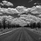 Peaceful, Easy Feeling - The Kruger Park Road by Deborah V Townsend