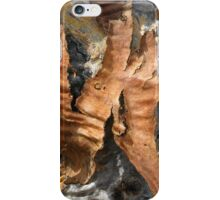 Abstract in Bark iPhone Case/Skin