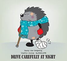 Drive carefully at night by mangulica