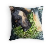 This is the place I call home... Throw Pillow