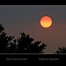 East Coast Sunset - Cool Stuff by Maria A. Barnowl