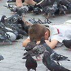 Pigeons... by Stevie Toye