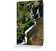 Spring Cascade  Greeting Card