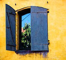 Open Window by Ron Zmiri