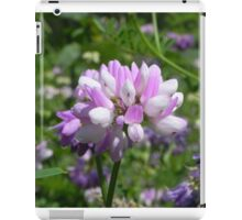Purple Crown Vetch iPad Case/Skin