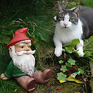 Puss and Boots! (aka Eddie and the Gnome!) by Maddie