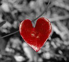 Love Heart2 (horizontal) by berndt2