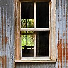 Through the Window and Beyond by John  Kapusta