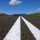 Double White Lines by zook