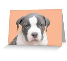 I'm Too Cute For Words ~ Greeting Card