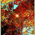 When the sun, at last comes down..long time since we played with friends in the streets..Until we learn to love each other..Seems just like the other day..All tired of our foolish play by jammingene