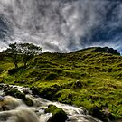Mountain Stream by Kevin Hart