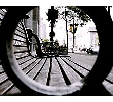Park Benches Photographic Print