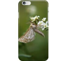 Free State Moth... South Africa iPhone Case/Skin