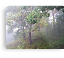 Foggy Shenandoah Mountain Top Metal Print