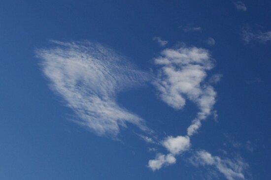 Cloudheart by Cary McAulay