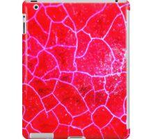 Red Dragon Vein Agate Pattern iPad Case/Skin